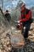 소나무재선충병이 발생한 세종시 전동면에서 세종시산림조합 직원들이 기계톱을 이용, 소나무 벌목을 하고 있다. [프리랜서 김성태]