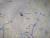 경기도 파주시 '감악산 출렁다리' 위치도. [사진 다음지도]