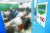 2019 대학수학능력시험을 100일 앞둔 지난 7일 서울 중구 종로학원에서 수험생들이 공부를 하고 있다. [연합뉴스]