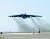 """미 공군은 12일 카타르 공군기지에서 이륙하고 있는 B-52 전략폭격기의 사진을 잇따라 공개했다. 하루 뒤 미 공군 대변인은 '이들 폭격기가 중동 지역에서 억제 임무를 수행하는 비행을 시작했다""""고 밝혔다. [AP=연합뉴스]"""
