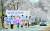 대청호 벚꽃길로 유명한 대전 동구 회남로 일원에서 지난달 31일 구청직원들이 코로나19 극복을 위한 '내리지 말고 드라이브 스루로 즐기는 벚꽃길' 캠페인을 펼치고 있다. 프리랜서 김성태