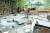 산불현장에서 날아온 불씨로 소실된 농가 비닐하우스. 지난 1일 고성군 토성면 도원리의 한 주택에서 시작된 불이 야산으로 옮겨붙으면서 산림 85㏊와 주택 1채 등 시설물 6개 동을 태웠다. [뉴스1]