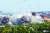 16일 개성 공단에 위치한 남북 연락사무소 건물이 폭파되고 있다. [조선중앙통신=연합뉴스]