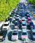 드라이브 스루 시위