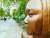 지난 달 25일(현지시간) 독일 수도 베를린에 설치된 '평화의 소녀상'에 빗물이 맺혀있다. [연합뉴스]