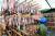 경북 포항시 남구 구룡포읍 한 수산업체 직원이 과메기를 말리고 있다. 과메기는 꽁치를 짚으로 엮은 뒤 바닷가 덕장에 매달아 찬바람에 얼렸다 녹이기를 반복해 만든다. [뉴스1]