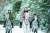 북한은 김씨 일가 3대 세습의 정통성을 강조하기 위해 백두산 혈통을 선전하다. 사진은 지난 2019년 10월 16일 조선중앙TV가 김정은 북한 국무위원장이 백마를 타고 백두산에 올랐다고 보도한 영상. 김정은 옆에 김여정(왼쪽), 조용원(오른쪽) 노동당 제1부부장이 함께 말을 타고 있다. [연합뉴스]