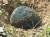 2014년 3월 10~17일까지 경남 진주에서 4개의 운석이 발견됐다. 대곡면 한 비닐하우스에서 발견된 진주 운석 1호(9.36㎏). 송봉근 기자