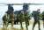 지난달 아프가니스탄에서 철수하는 미군들. AFP, 연합뉴스.