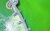 지난 4일 녹조가 발생한 대구 달성군 다사읍 죽곡리와 경북 고령군 다산면 곽촌리를 잇는 강정고령보 일대 낙동강 물빛이 짙은 초록을 띠고 있다. 연합뉴스