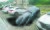 자동차 집어삼킨 싱크홀