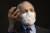 앤서니 파우치 미국 국립알레르기·전염병 연구소장. [AP=연합뉴스]