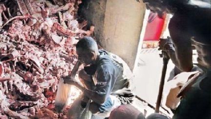 배고픔에 동물 사체까지 뒤진다…브라질 '미친 물가' 쇼크