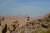 요르단 사막지대에서 지상을 박차고 뛰어오른 『문도선행록』의 저자 김미루씨. [사진 통나무]