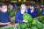 김종인 미래통합당 비상대책위원장이 14일 서울 송파구 가락농수산물종합도매시장을 방문해 경매에 나온 수박을 들어보고 있다. [연합뉴스]