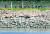 25일 오후 인천 강화군 평화전망대에서 바라본 북한 황해북도 개풍군 초소 부근 철책에서 북한 군인들이 작업하고 있다. [연합뉴스]