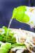 샘표식품이 조선간장 현대화 프로젝트를 진행하다가 만든 액체 조미료 '연두'. [사진 윤광준]
